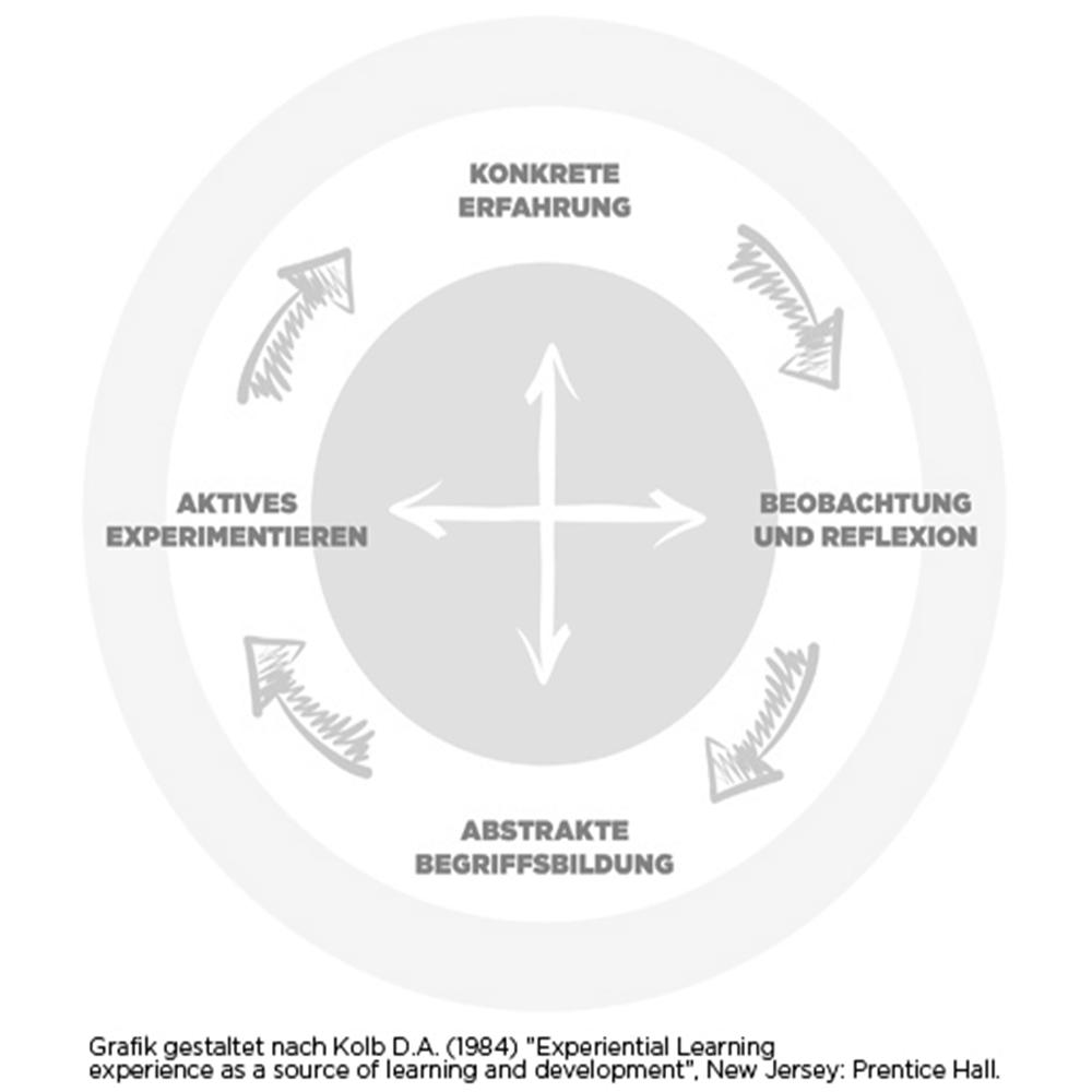 Grafik: Die Phasen der Erfahrung