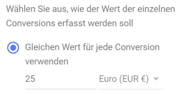 Scrennshot: Wert der Conversion