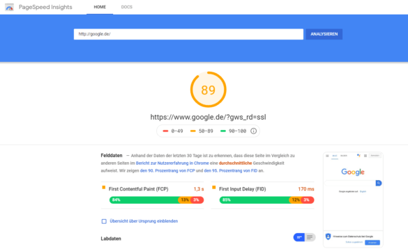 Screenshot: pagespeed Insights