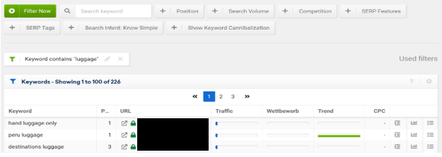 Screenshot SISTRIX Top 100 Keywords
